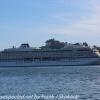 New-Zealand-Day-Thirteen-Dunedin-Otaga-Peniinsula-harbor-cruise-20-of-42