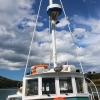 New-Zealand-Day-Thirteen-Dunedin-Otaga-Peniinsula-harbor-cruise-4-of-42