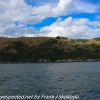 New-Zealand-Day-Thirteen-Dunedin-Otaga-Peniinsula-harbor-cruise-6-of-42