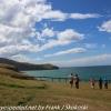 New-Zealand-Day-Thirteen-Dunedin-Otaga-Peninsula-yelow-eyed-penguins-walk-13-of-21