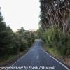 New-Zealand-Day-Thirteen-Dunedin-Signal-hill-walk-15-of-46