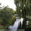 New-Zealand-Christchurch-morning-walk-Feburary-8-12-of-47