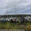 New-Zealand-Day-Twelve-Dunedin-afternoon-walk-9-of-40