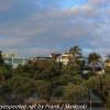 New-zealand-Day-Twenty-Auckland-morning-walk-18-of-38