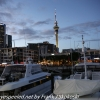 New-zealand-Day-Twenty-Auckland-morning-walk-3-of-38