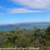 New-zealand-Day-Twenty-Auckland-Rangitoto-deive-and-hike-to-summit-19-of-20