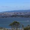 New-zealand-Day-Twenty-Auckland-Rangitoto-deive-and-hike-to-summit-20-of-20
