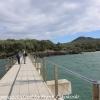 New-zealand-Day-Twenty-Auckland-Rangitoto-deive-and-hike-to-summit-5-of-20