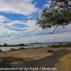 New-zealand-Day-Twenty-Auckland-Rangitoto-deive-and-hike-to-summit-8-of-20