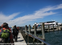 New-zealand-Day-Twenty-Auckland-Rangitoto-hike-from-summit-1-of-1