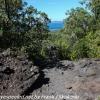 New-zealand-Day-Twenty-Auckland-Rangitoto-hike-from-summit-10-of-39