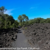 New-zealand-Day-Twenty-Auckland-Rangitoto-hike-from-summit-12-of-39