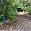 New-zealand-Day-Twenty-Auckland-Rangitoto-hike-from-summit-3-of-39