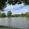 New-Zealand-Christchurch-botnical-gardens-4-of-20