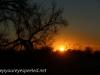 Grand Forks Morning walk (7 of 39)