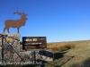 North Dakota Sully Hill Game Preserve.  (3 of 17)