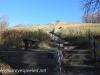 North Dakota Sully Hill Game Preserve.  (7 of 17)