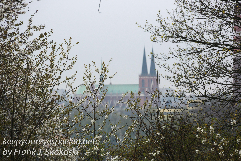 Poland Day Eight Czestochowa morning return hike -2