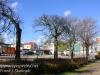 Gdansk Oliwa walk-450