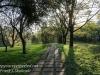 Warsaw morning walk -25