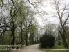 Poland Day Nine Czestochowa walk in park -1