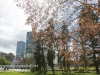 Warsaw afternoon walk -168