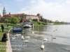 Poland Day Ten Krakow Vistula River -6