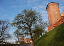 Poland Day morning Wawel -1