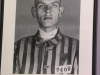 Auschwitz exhibits photos -9