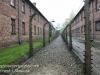 Auschwitz exhibits gas chambers -12
