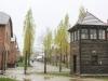 Auschwitz exhibits gas chambers -18