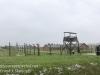 Birkenau-19