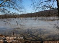 wetlands -1