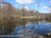 ppl wetlands (5 of 27).jpg