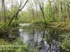 PPL Wetlands -20