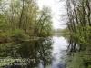 PPL Wetlands -21