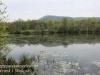 PPL Wetlands -22