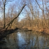 PPL-Wetlands-1-of-10