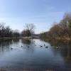 PPL-Wetlands-6-of-10