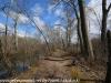 PPL Wetlands   (10 of 24)
