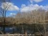 PPL Wetlands   (11 of 24)