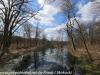 PPL Wetlands   (12 of 24)