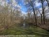 PPL Wetlands   (13 of 24)