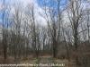 PPL Wetlands   (15 of 24)