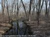PPL Wetlands   (2 of 24)