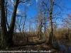 PPL Wetlands   (3 of 24)