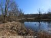 PPL Wetlands   (6 of 24)