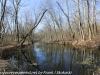 PPL Wetlands   (7 of 24)