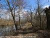 PPL Wetlands   (9 of 24)