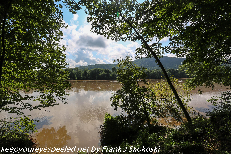 PPL Wetlands  (3 of 36)